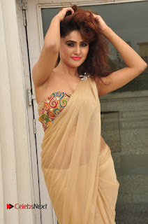Actress Sony Charishta Pictures in Saree at Aura Fashion Exhibition Launch  0078
