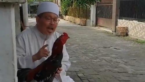 Tengku Zul Masuk RS, Denny Siregar: Kasihan Ayamnya Gak Ada yang Kasih Makan