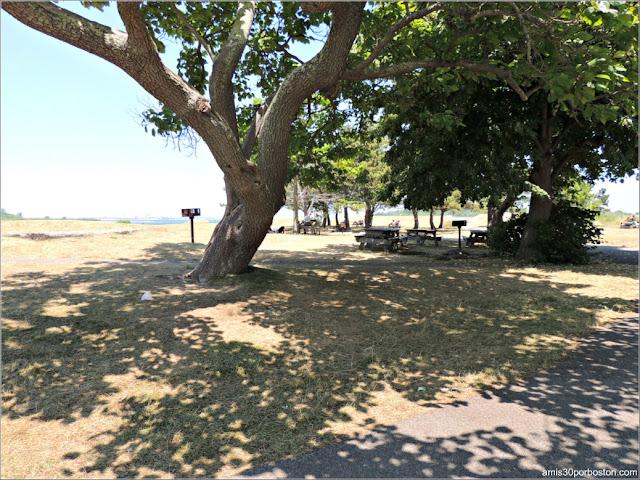 Georges Island: Zona Picnic