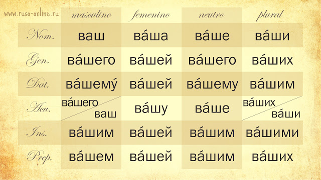Declinación del pronombre ruso ваш (vuestro)