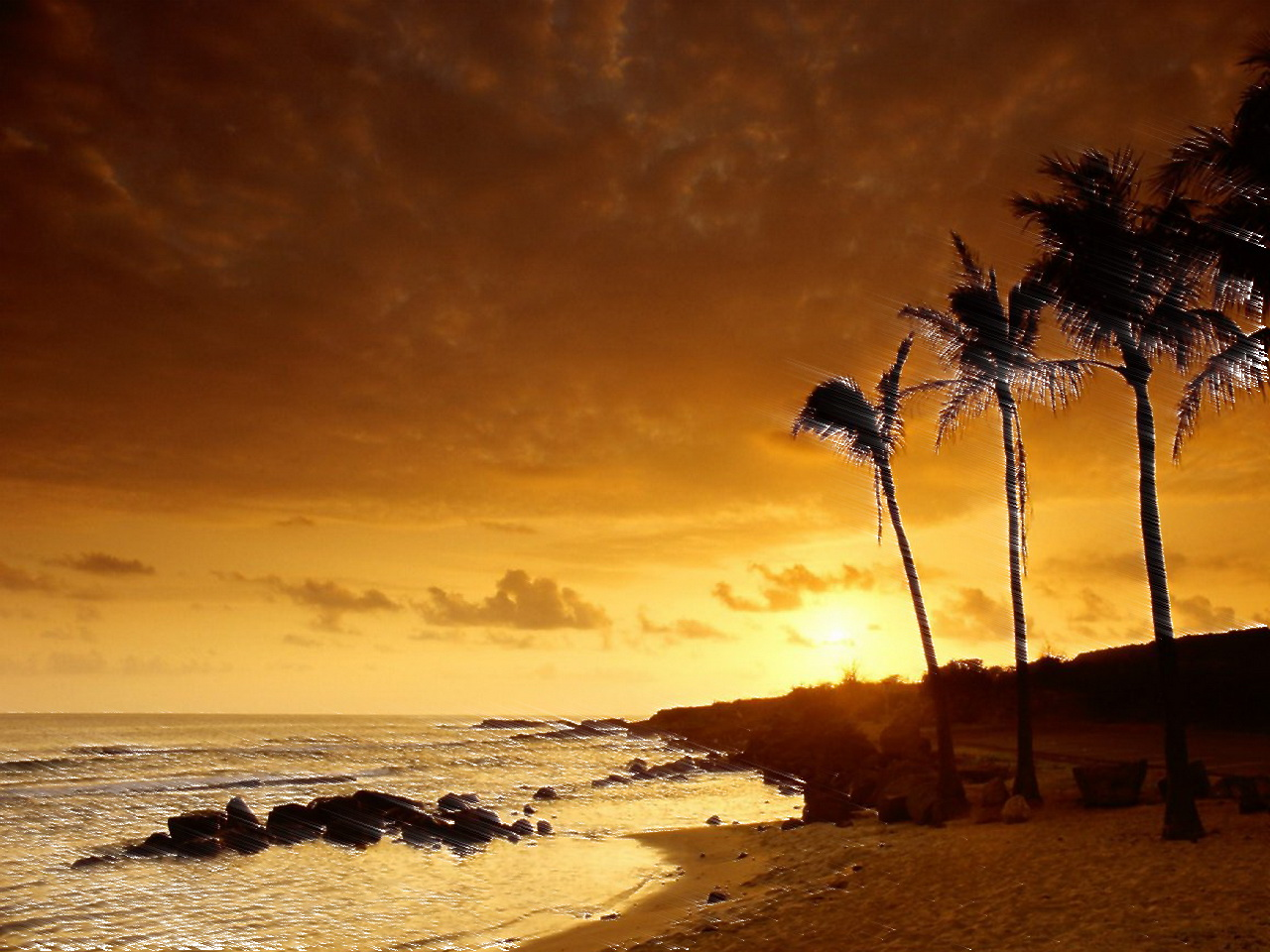 RSS Wallpapers: Beach And Night HD Wallpaper