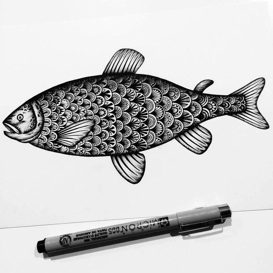 04-Atlantic-Salmon-Raven-Pavneet-Sembhi-www-designstack-co