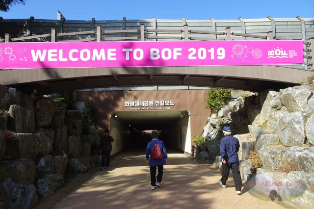 Busan One Asia Festival 2019