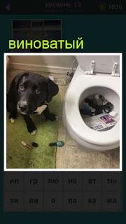 сидит собака с виноватым видом , так как навела беспорядок в доме 667 слов 13 уровень