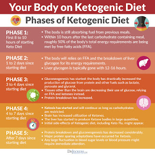 Phases of Ketogenic