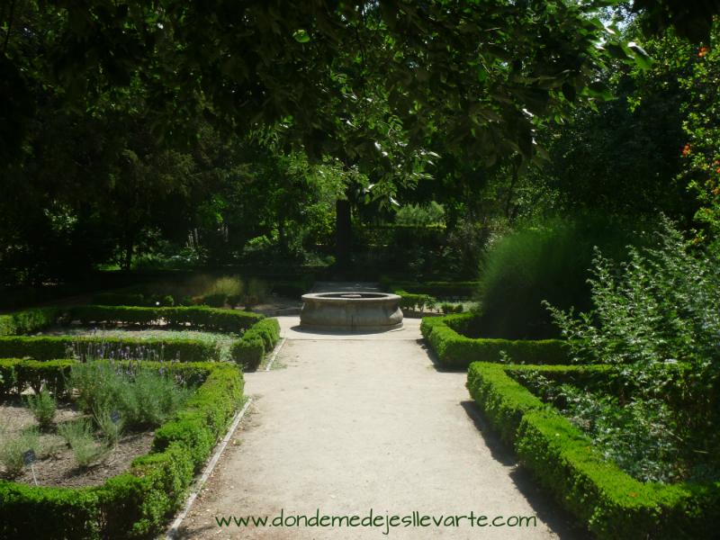 Donde me dejes llevarte real jard n bot nico un museo for Jardin botanico tarifas