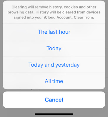 How to clear safari browsing history