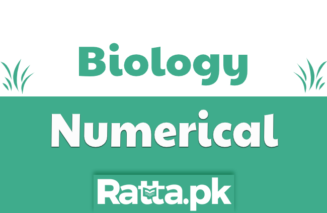 biology numerical