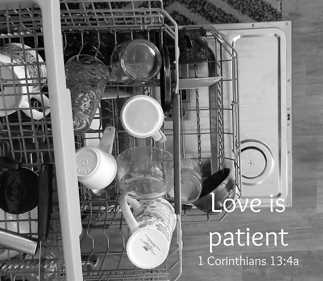 What Does Patient Love Look Like