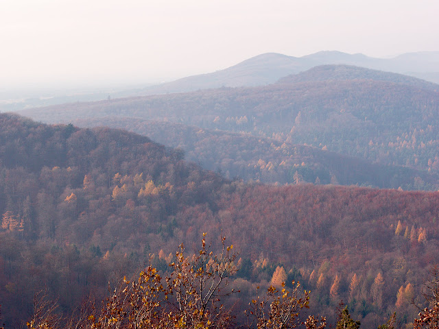 Blick vom Hermannsdenkmal über den Teutoburger Wald