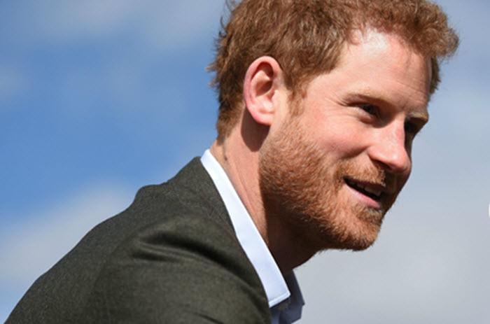 Harry - Chàng hoàng tử bên lề