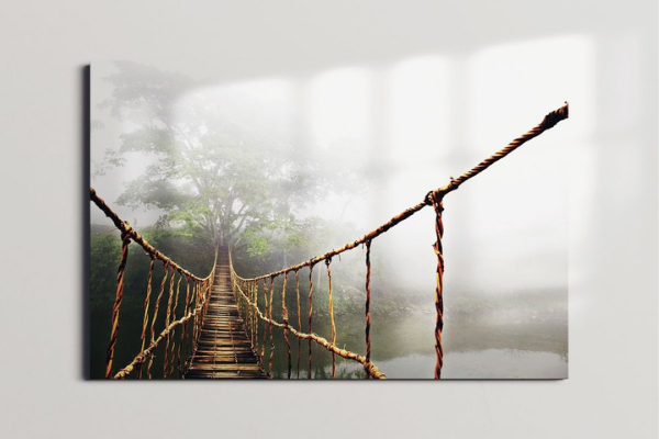wall print of a rope bridge leading to a forest