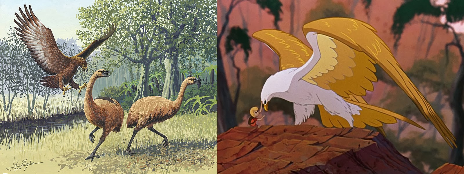Golden Eagle Skeleton Diagram 13 Pin Trailer Plug Wiring Art Of Emily Willoughby Left Illustration Haast S By John Megahan Creative Commons Right Screenshot Marahute From The Rescuers Down Under