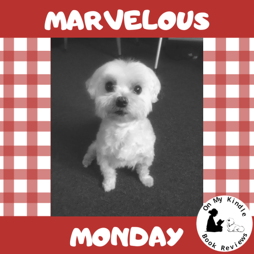 Marvelous Monday with Lexi: July 29th Edition!