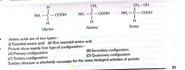 Handbook- Biology BIOMOLECULES(Protoplasm)