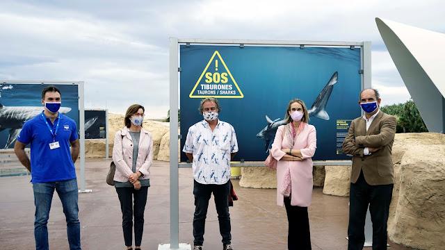 Pablo García, Mercedes Calabuig, JA Romero, Celia Calabuig y Eduardo Nogués frente a la exposición SOS Tiburones