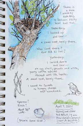 Nature journal sketch