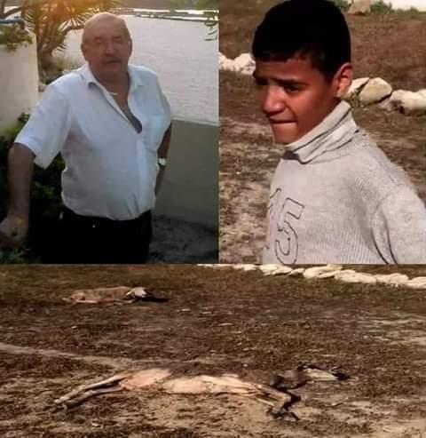 الفيديو يوثق ردة فعل جنونية للفرنسي الذي قتل كل غنم الأسرة وهي راس مالهم الوحيد...