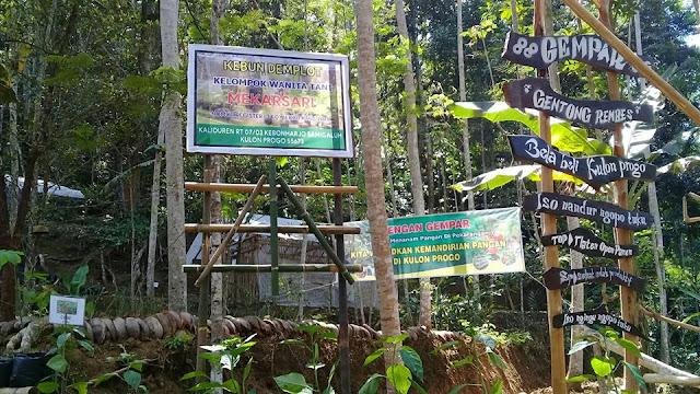 Kegiatan Kelompok Wanita Tani Kaliduren, Kebonharjo, Samigaluh, Kulon Progo