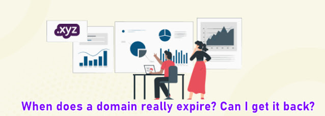 When does a domain really expire? Can I get it back?