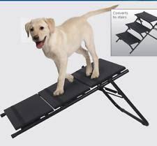 rampas para cães com lesão