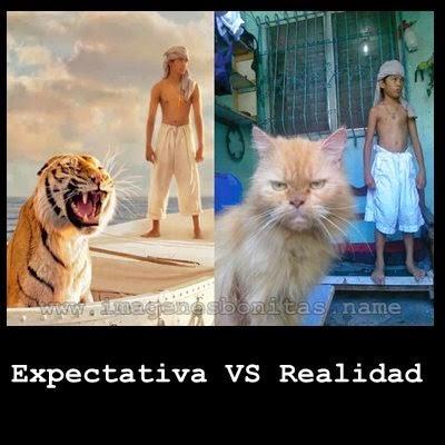 Expectativa vs Realidad: Pelicula