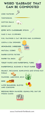 Graphic, 20+ Unexpected things you can compost