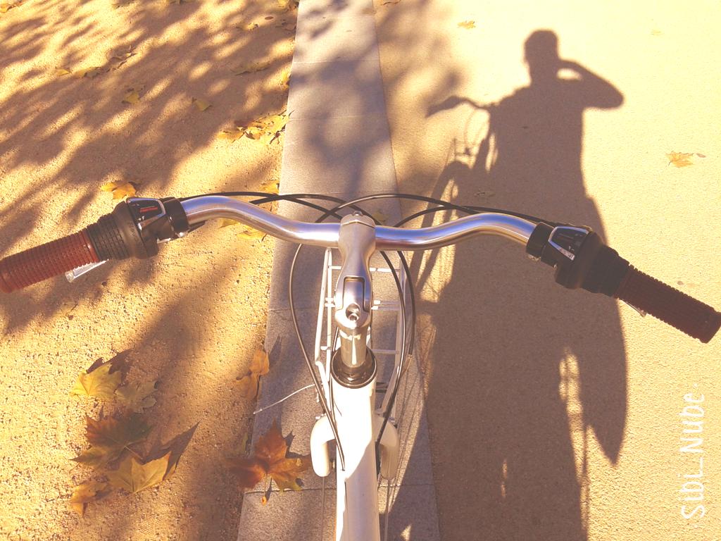 bicicleta-sombra-otoño