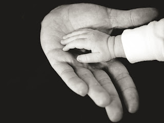 child's hand in parent's hand