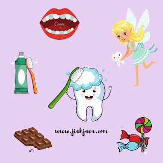 jumlah gigi dewasa