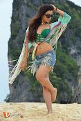 Mannara Chopra Rogue Stills-thumbnail-6