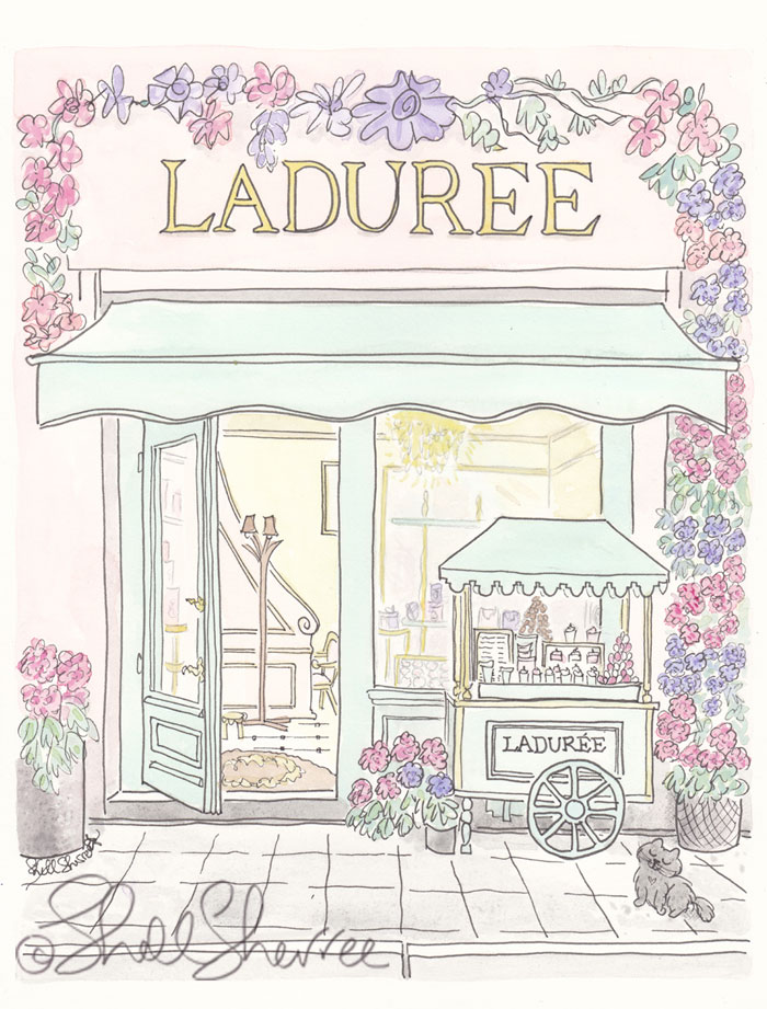 Ladurée Flowering and Cart with Cat illustration © Shell Sherree all rights reserved