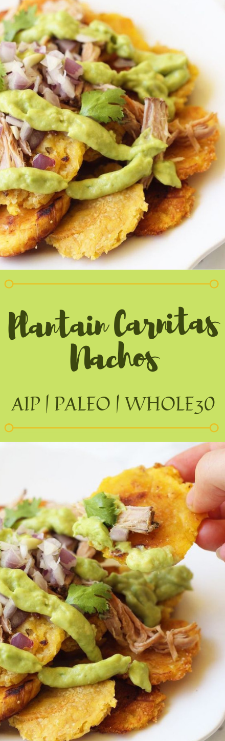 Plantain Carnitas Nachos #diet #healthy #recipes #aip #paleo