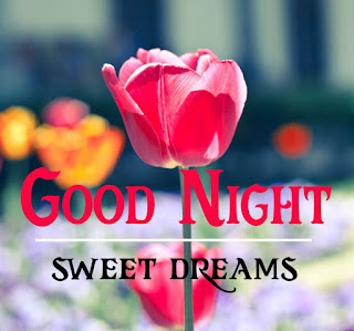 new good night Images%2B104