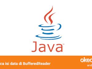 Belajar Membaca isi Data File TXT dengan BufferedReader di Java