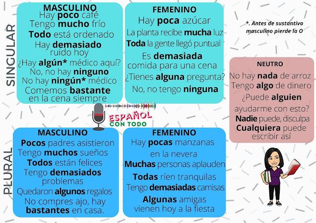 ¿Qué son los indefinidos en español?