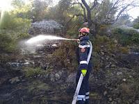 požar Lokanjac Selca slike otok Brač Online