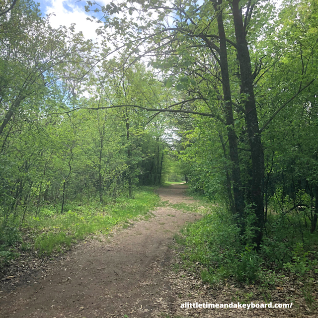 Wooded paths invite forest bathing at Willow River State Park.
