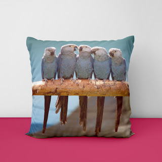 luxury cushion covers 2021