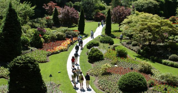 Victoria Butterfly Gardens, Fascinating Canada Tourist Attractions ...