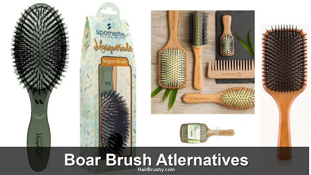 Cruelty-free boar bristle brushes