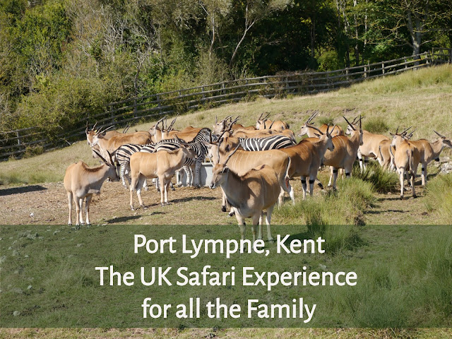 Port Lympne header image
