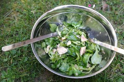 Feldsalat mit geräucherter Forelle