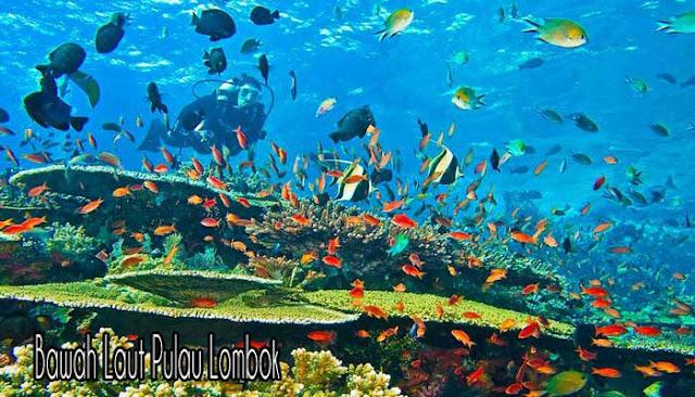 Pulau Lombok, Destinasi Wisata Terbaik Di Indonesia
