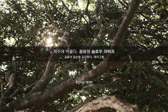 孔劉-代言-epigram-鬼怪寫真書中文版