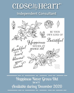 Happiness Never Grows Old December 2020 SOTM