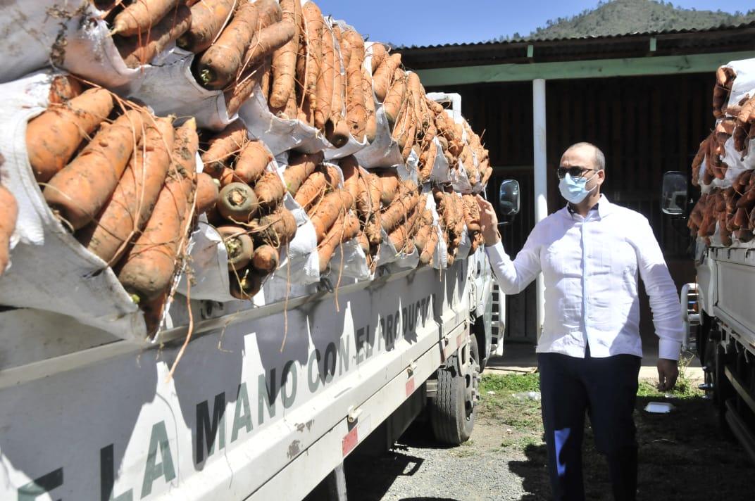 Zanahorias en Constanza