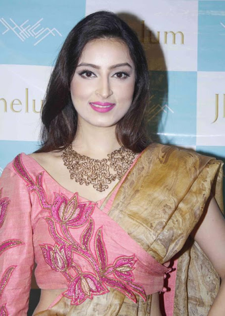 Chandni Sharma in Designer Saree at Jhelum Fashion House Launches Label JFH