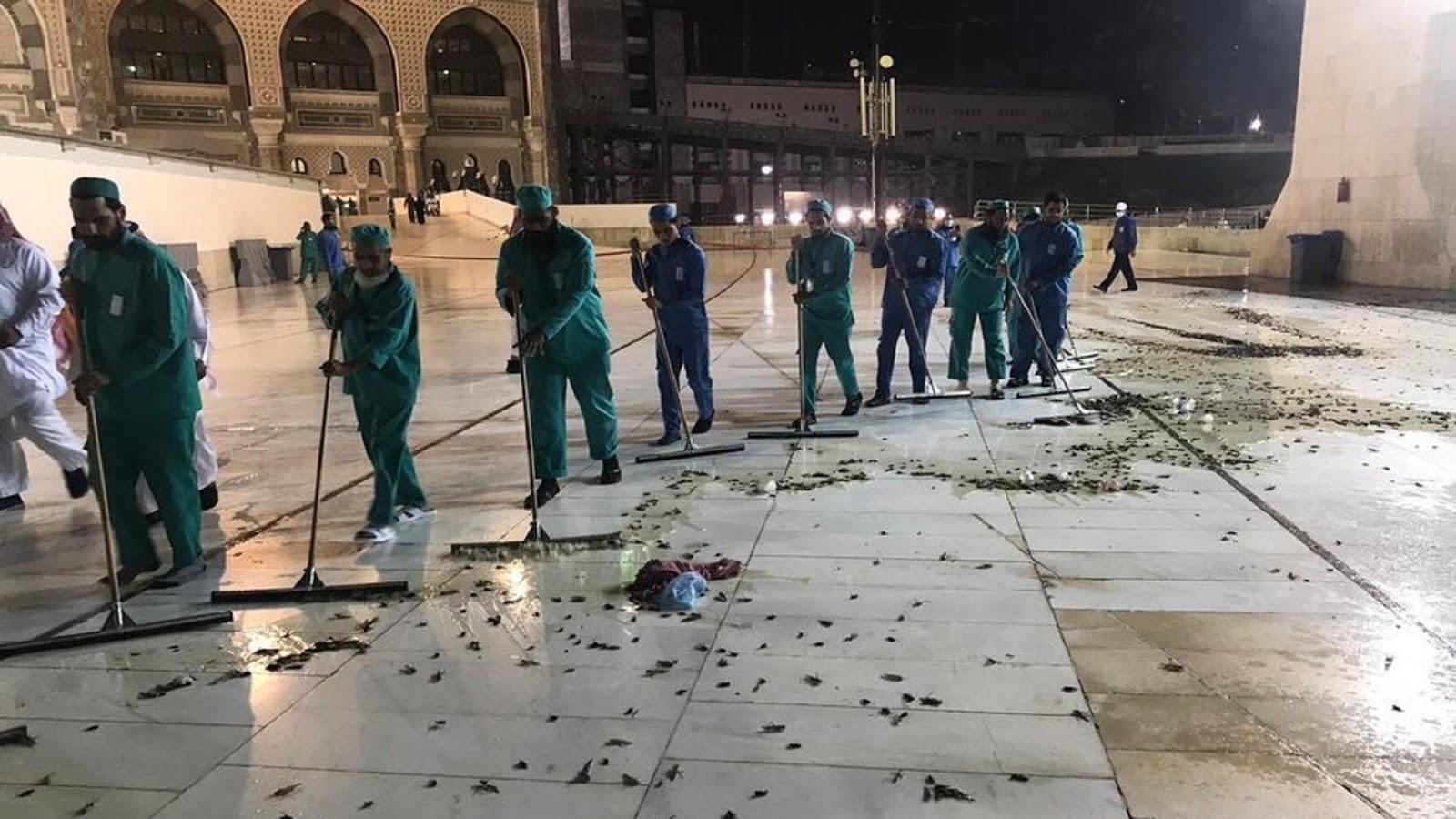Subhanallah, Ribuan Jangkrik Serang Masjidil Haram