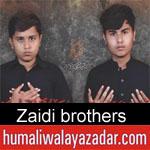 https://www.humaliwalyazadar.com/2018/10/zaidi-brothers-nohay-2019.html